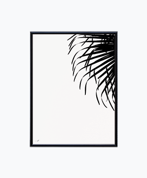 PALM IN WHITE